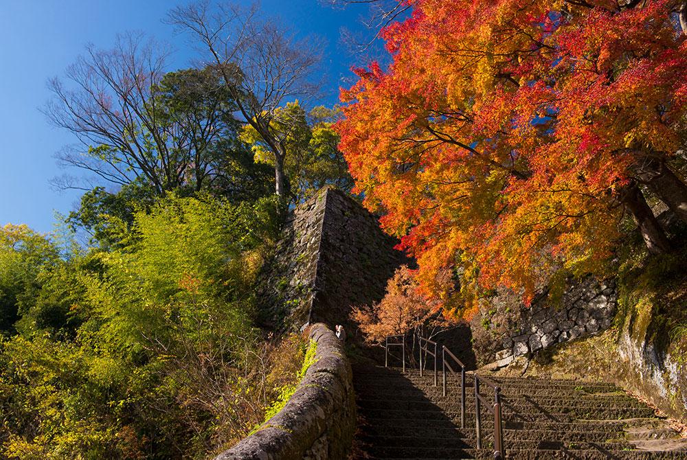 岡城跡。滝廉太郎が『荒城の月』を作曲する際にイメージしていた場所。